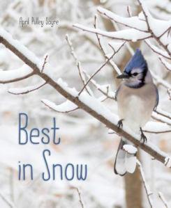 best-snow